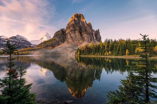 Landschaft von sunburst see und von berg assiniboine-reflexionen zwischen kiefer bei sonnenaufgang Premium Fotos