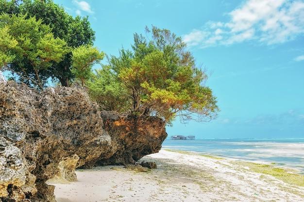 Landschaftsparadies-tropeninselstrandsonnenaufgangschuß Premium Fotos