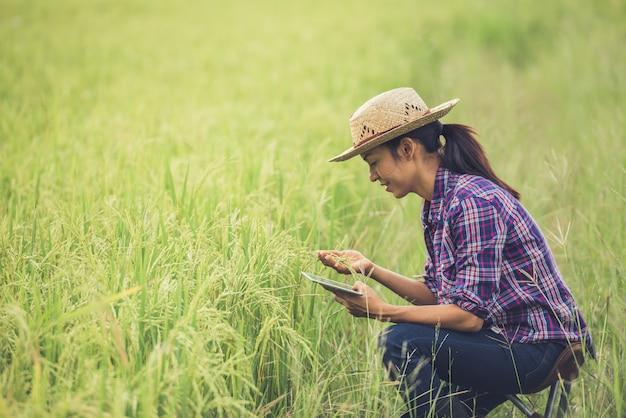 Landwirt, der auf einem reisgebiet mit einer tablette steht. Kostenlose Fotos