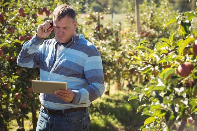 Landwirt, der digitale tablette bei der unterhaltung am handy im apfelgarten verwendet Kostenlose Fotos