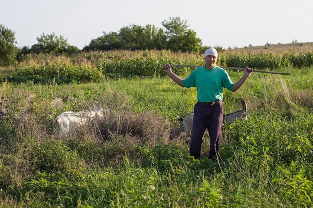 Landwirt, der kamera beim aufpassen von ziegen betrachtet Kostenlose Fotos