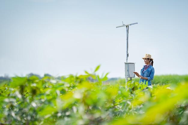 Landwirte planen, mit hilfe von düngemitteltechnologie auf einer tablette zu landen. Premium Fotos