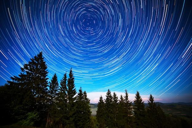 Lange belichtung von strahlend sternenklarem himmel und nadelwald mit hohen bäumen Premium Fotos