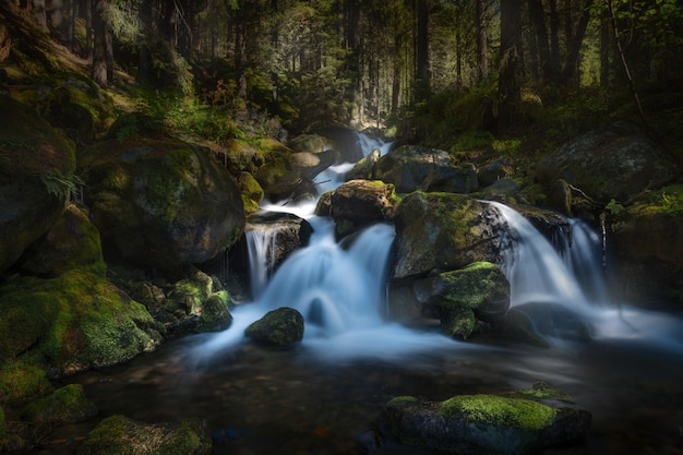 Langzeitbelichtung eines wasserfalls im wald, umgeben von bäumen Kostenlose Fotos