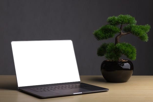 Laptops mit bonsai auf dem tisch der hintergrund ist ein dunkelgrauer hintergrund. Premium Fotos