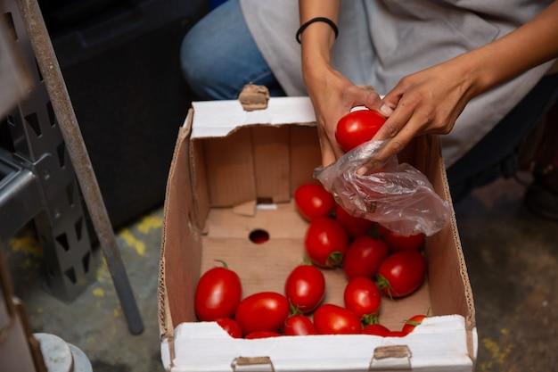 Lateinische frau, die tomaten auf plastiktüte packt Premium Fotos