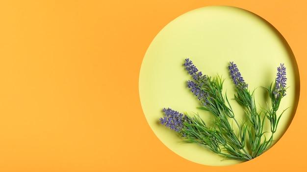 Lavendel im rahmen mit kopienraum Kostenlose Fotos