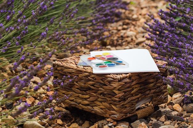 Lavendelfeldsommerlandschaft nahe valensole. das set des künstlers. nahansicht Premium Fotos