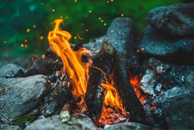 Lebendig schwelendes brennholz brannte in feuernahaufnahme. orangenflamme des lagerfeuers. vollbild des freudenfeuers mit funken im bokeh. warmer wirbel aus glühender glut und asche in der luft Premium Fotos