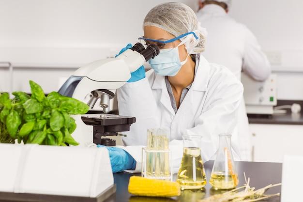 Lebensmittelwissenschaftler, der das mikroskop verwendet Premium Fotos