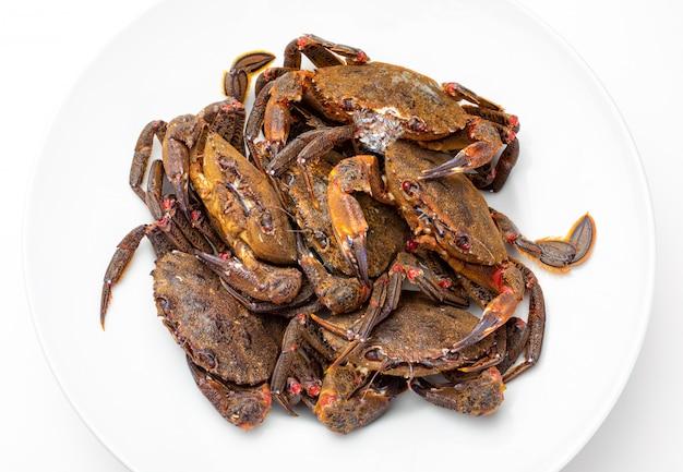 Leckere meeresfrüchte aus dem golf von biskaya und atlantik Premium Fotos