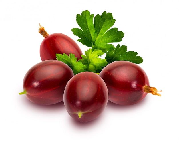 Leckere rote johannisbeeren (ribes hirtellum - rode gooseberry) Premium Fotos