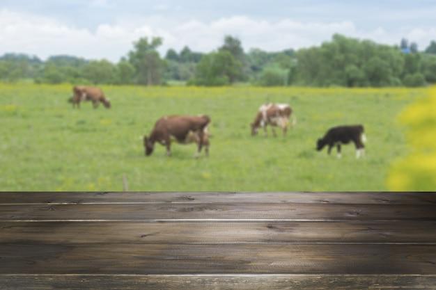 Leere hölzerne tischplatte und unscharfer ländlicher hintergrund von kühen auf grünem feld. anzeige für ihr produkt. Premium Fotos
