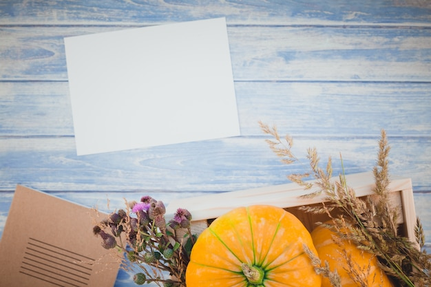Leerer leerer brief mit herbstkürbisen Premium Fotos
