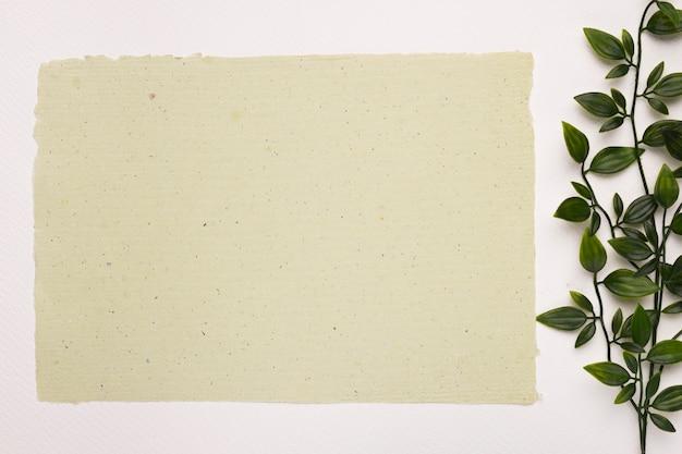 Leeres strukturiertes papier nahe den pflanzenblättern auf weißem hintergrund Kostenlose Fotos