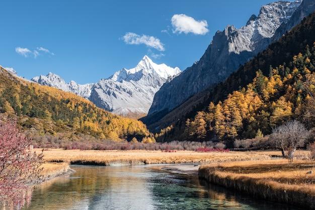 Letzter berg shangri-la von chana dorje mit buntem kiefernwald im herbst Premium Fotos