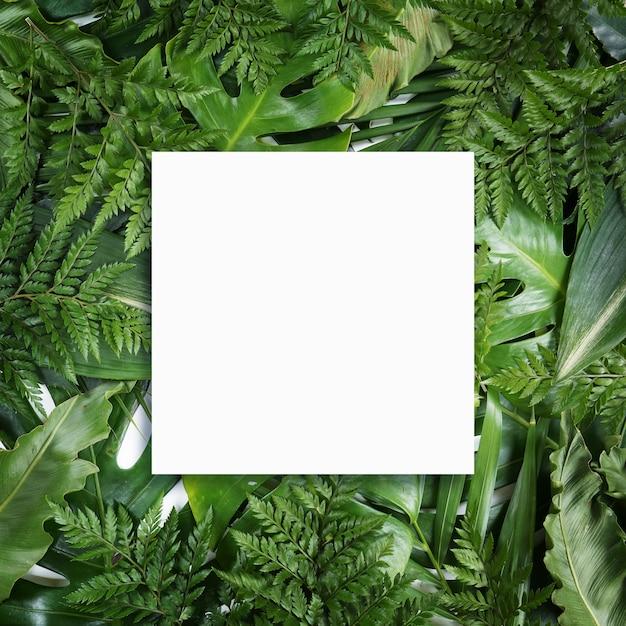 Leuchtstoffsommerhintergrund, abstrakte rahmenkarte des sommerfreien raumes Premium Fotos
