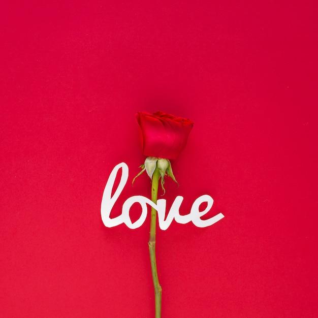 Liebesaufschrift mit rosafarbener blume auf tabelle Kostenlose Fotos