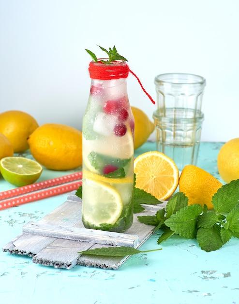 Limonade des sommerauffrischungsgetränks mit zitronen, moosbeere, tadellosen blättern Premium Fotos
