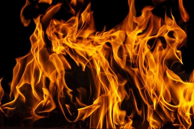 Lodernde feuerflamme auf schwarzem hintergrund Premium Fotos