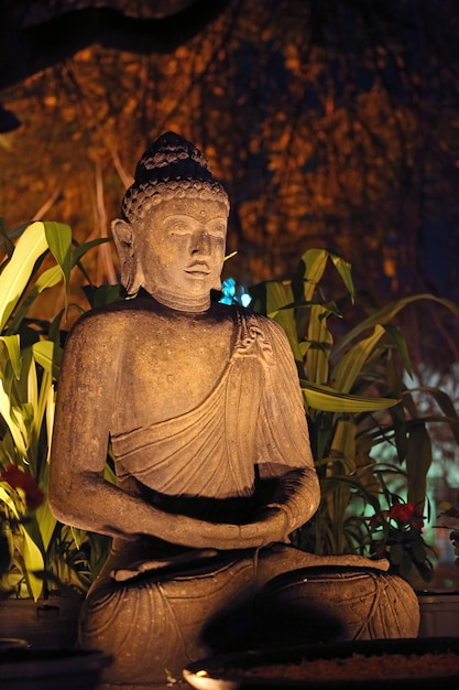 Lord budha Premium Fotos
