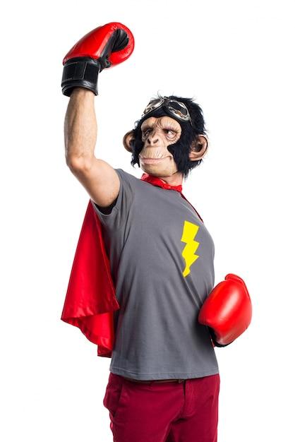 Lucky superheld affen mann mit boxhandschuhen Kostenlose Fotos