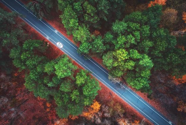 Luftaufnahme der straße im schönen herbstwald Premium Fotos