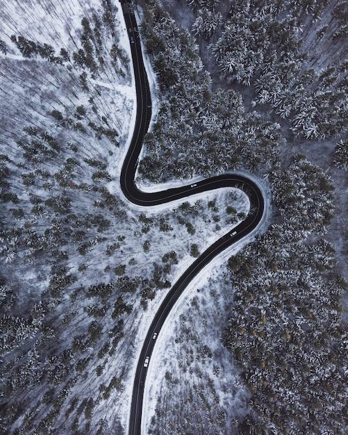 Luftaufnahme einer kurvenreichen straße von oben nach unten inmitten von bäumen und schnee Kostenlose Fotos