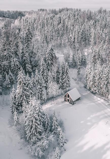 Luftaufnahme einer schönen winterlandschaft mit tannen und einer mit schnee bedeckten hütte Kostenlose Fotos