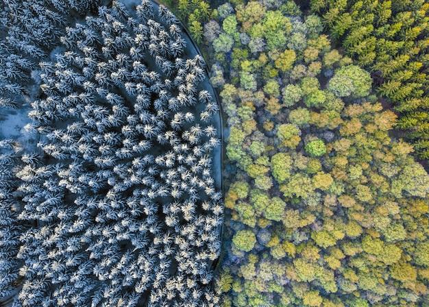 Luftaufnahme eines bunten waldes und eines waldes bedeckt im schnee unter sonnenlicht Kostenlose Fotos