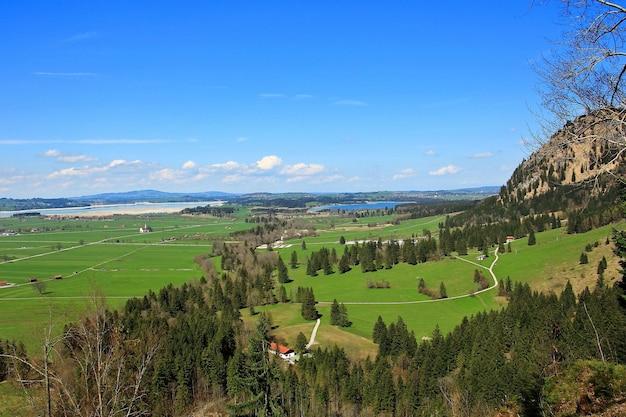 Luftaufnahme vom schloss neuschwanstein in deutschland im sommer. Premium Fotos