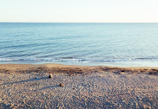Luftaufnahmen eines mädchens mit ihrem hund an einem unberührten strand, im naturpark punta entinas, almeria, spanien Premium Fotos