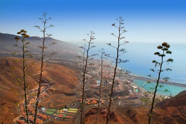 Luftbild santa cruz de la palma mit agave Premium Fotos