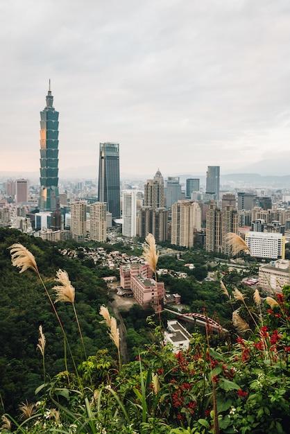 Luftpanorama über im stadtzentrum gelegenem taipeh mit wolkenkratzer taipehs 101 mit bäumen auf dem berg und gras blüht im vordergrund in der dämmerung von xiangshan (elefant-berg). Premium Fotos