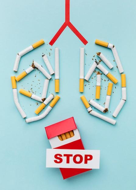 Lungen aus zigaretten gebildet Kostenlose Fotos