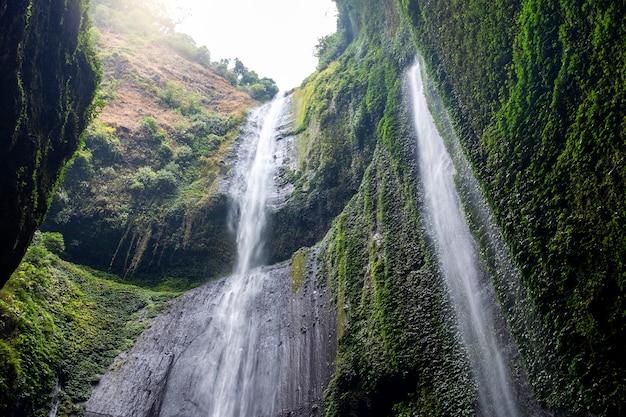 Madakaripura-wasserfall osttimor Premium Fotos