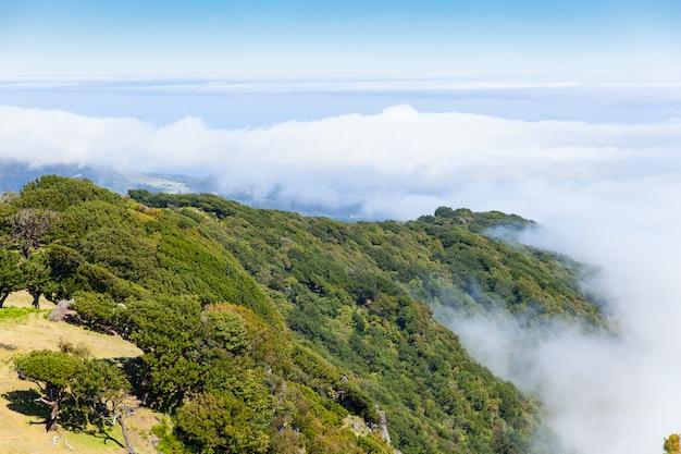 Madeira-berglandschaft unter einem blauen himmel Premium Fotos