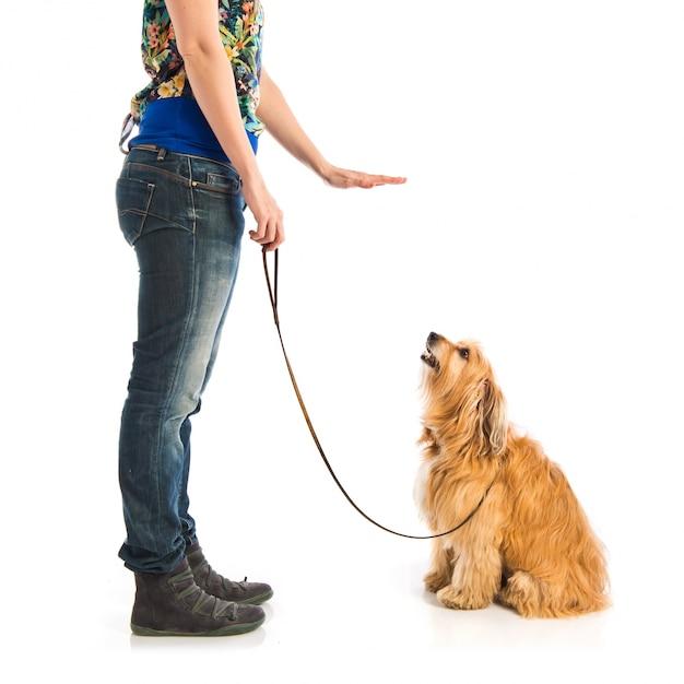 Mädchen, das einen hund ausbildet Premium Fotos
