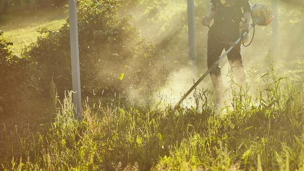 Mähen sie den rasentrimmer. das mähen von hohem gras mit einem trimmer. selektiver fokus auf ungeschnittenem tawa und zerstreuen partikel des geschnittenen grases. abendlichter bahnen sich ihren weg durch den nebel Premium Fotos