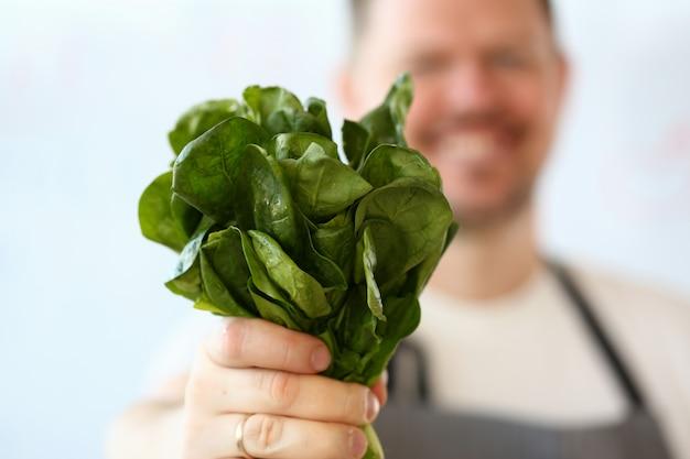 Männliche hand, die grünen aromatischen sauerampfer-bündel hält Premium Fotos