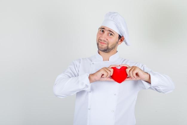 Männlicher koch in der weißen uniform, die rotes herz hält und froh schaut Kostenlose Fotos