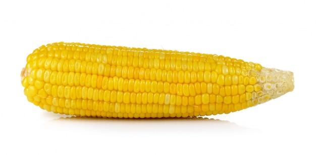 Mais auf weißem hintergrund Premium Fotos