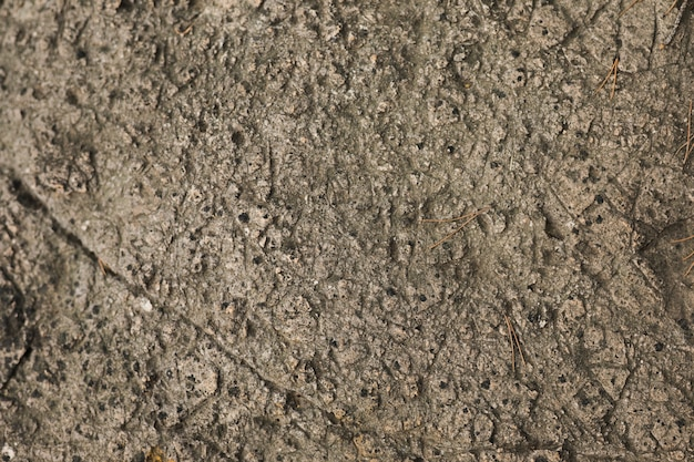 Makroschuß des steinhintergrundes Kostenlose Fotos