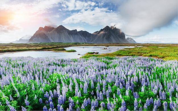 Malerische aussicht auf den fluss und die berge in island Premium Fotos