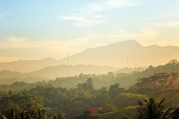 Malerische grüne berge bieten dschungel, ceylon Premium Fotos
