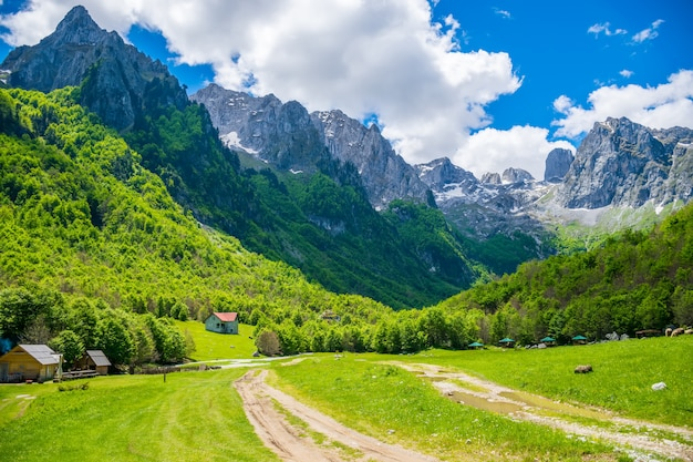 Malerische grüne wiesen in der nähe des großen hochgebirges. Premium Fotos
