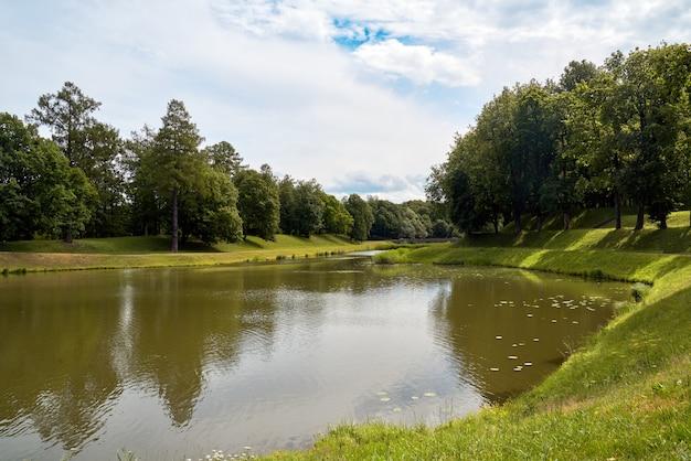 Malerischer wald und malerische nördliche umgebung des flusses Premium Fotos