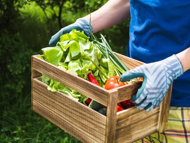 Mann, der frisches organisches gemüse in der kiste hält Kostenlose Fotos