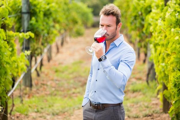 Mann, der rotwein trinkt Premium Fotos
