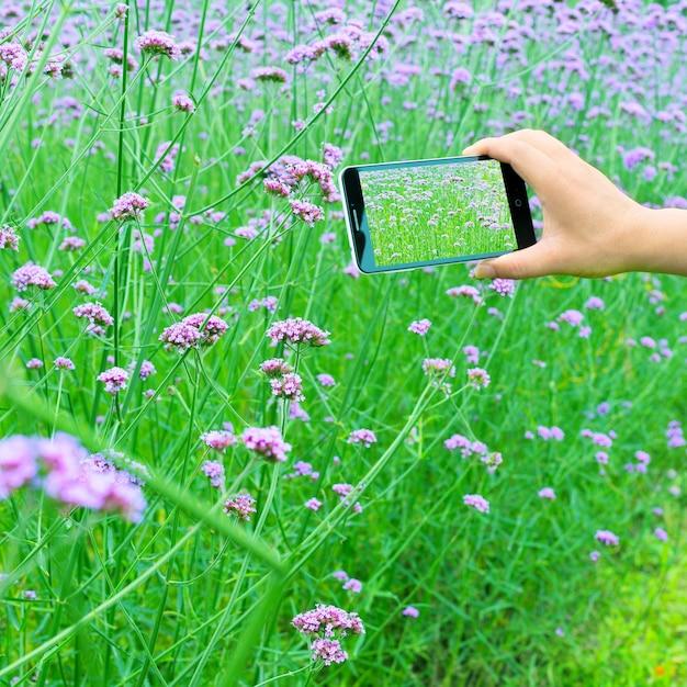 Mann mit handys, um verbene zu nehmen Premium Fotos